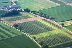 В Еланецком районе прокуратура вернула несколько десятков гектар земли в государственную собственность